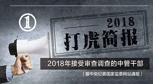 """2018""""打虎""""简报"""